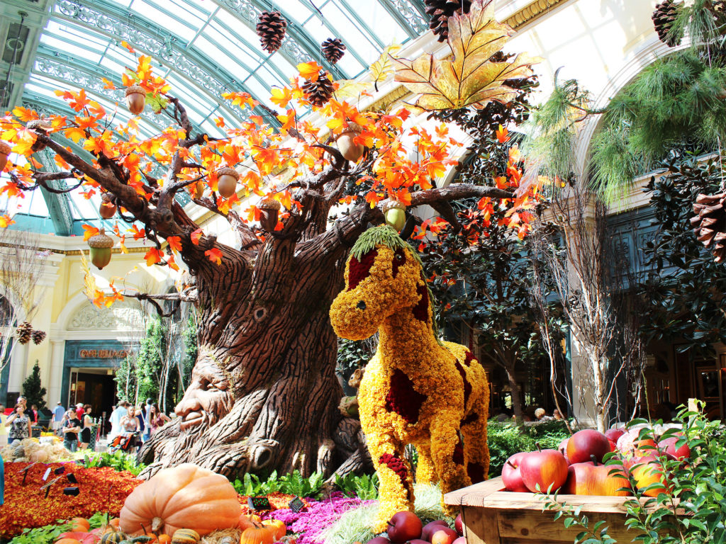 The Conservatory at Bellagio, Las Vegas Guide